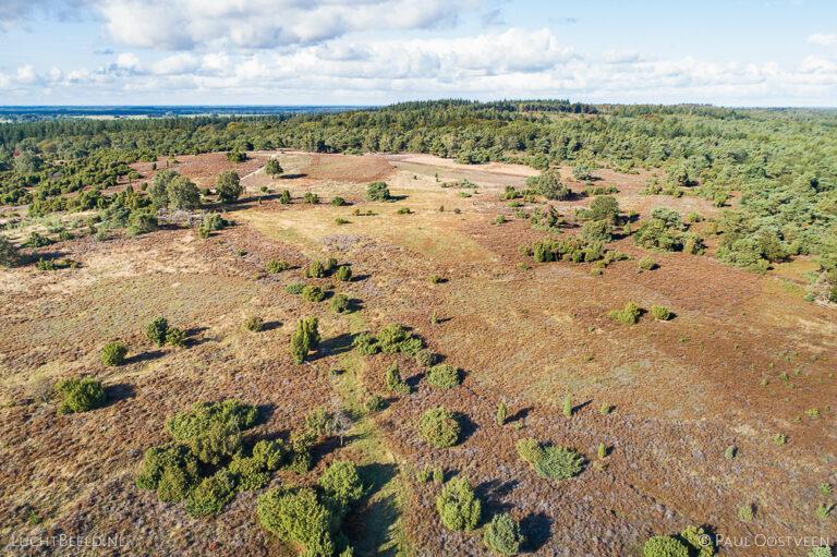 Hei op de Lemelerberg. Luchtfoto gemaakt met een camera drone.