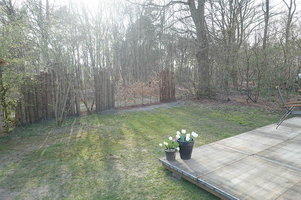 Vechtdalchalet Reggezicht tuin met boszicht